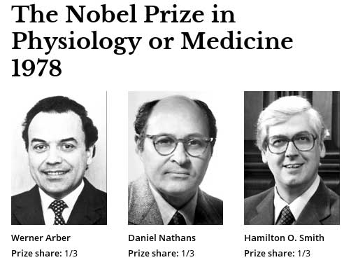Nobel Prize in Physiology and Medicine in 1978
